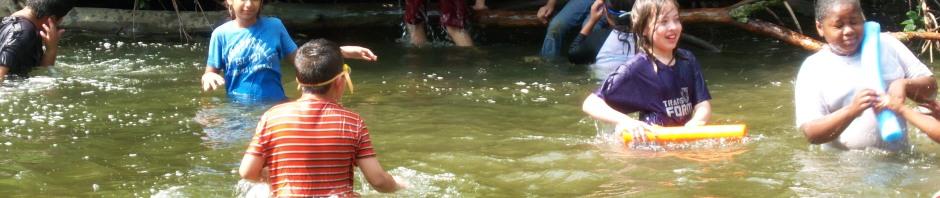 Creek Play
