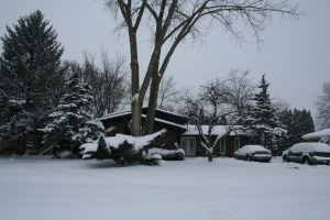 Sometimes the most peaceful place is in your front yard after a snowstorm and before it is disturbed!