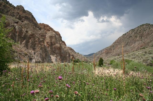 bryce canyon 156