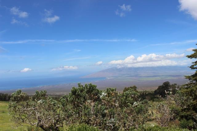 Hawaii Day 3 056